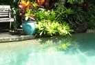 Deception Bay Swimming pool landscaping 3