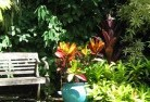 Deception Bay Tropical landscaping 11