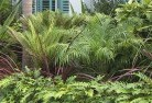 Deception Bay Tropical landscaping 2