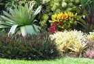 Deception Bay Tropical landscaping 9